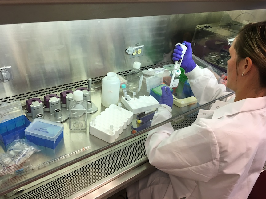 Scientist performing research